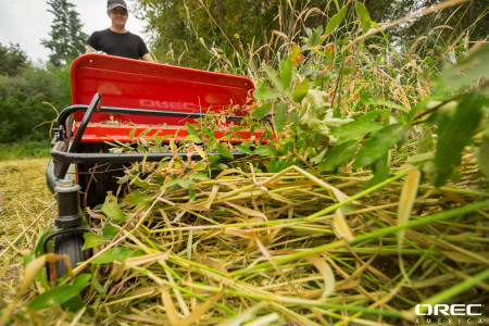 A mulching brush cutter like Orec's Cyclone Flail Mower, gets rid of weeds like Crab Grass in no time.
