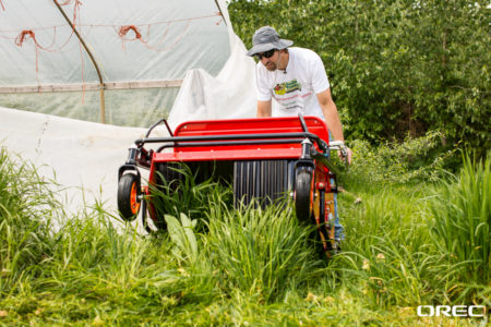 The Cyclone Flail mower makes it easier for you to mow underneath trees. And it gives you a great mulching cut.